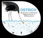 ostrich-logo_blackbck_greybird