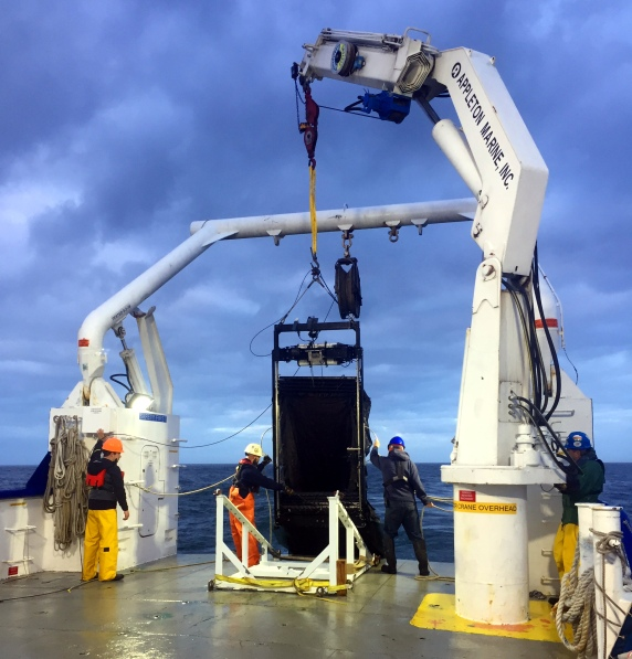MOCNESS being recovered on th RV Pelican