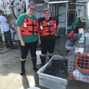 Marine Zooplankton Ecology Laboratory – University of