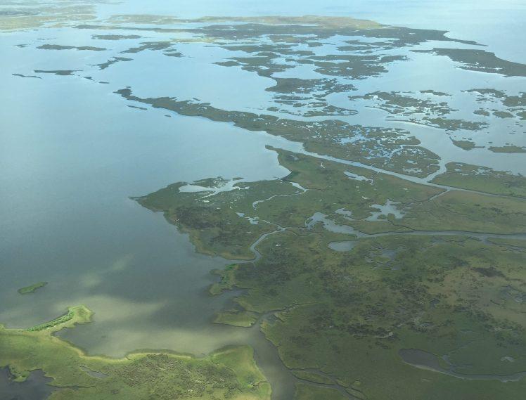 Louisiana coastal marsh